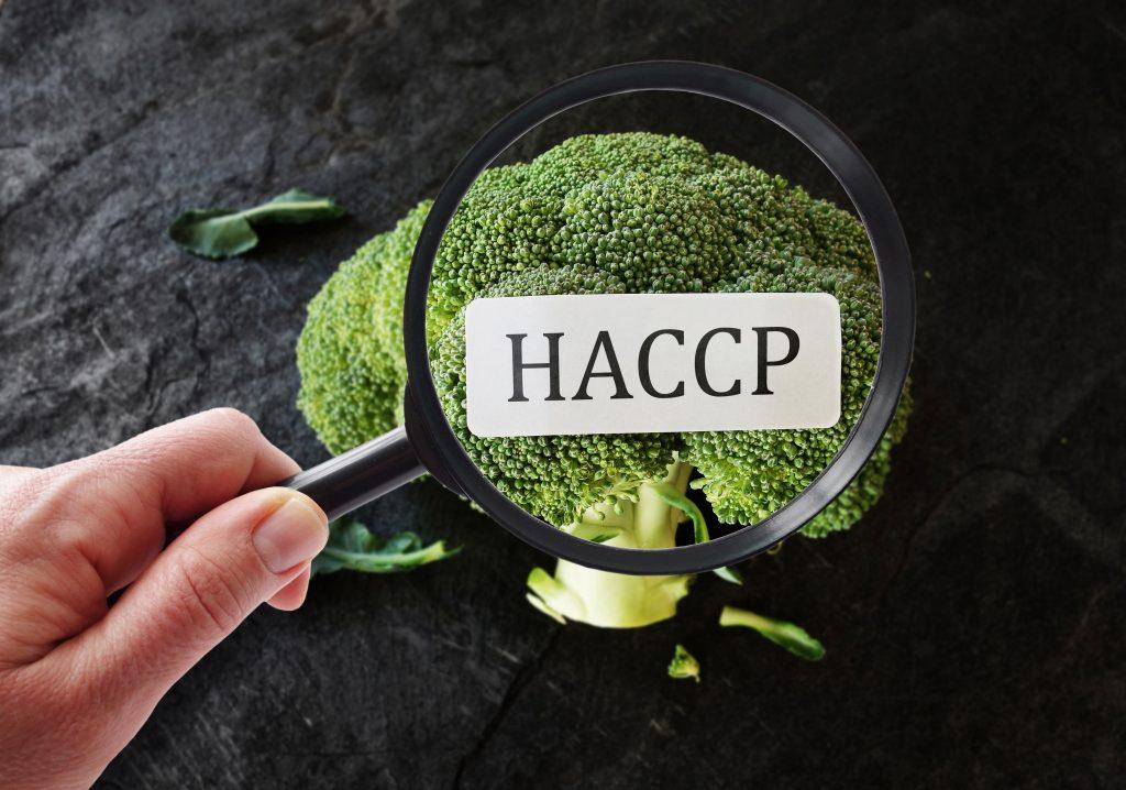 HACCP corso